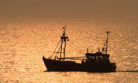 Sonapesca rechaza proyecto para anular Ley de Pesca