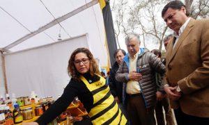 Mercado de la miel en Chile: ¿Cuál es su precio?