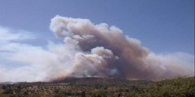 Conaf: Disminuyen incendios forestales en días de Año Nuevo