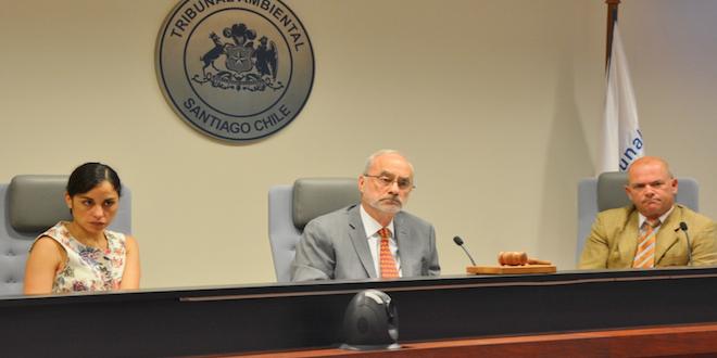 Tribunal Ambiental autoriza clausura parcial de granja de cerdos en Til Til