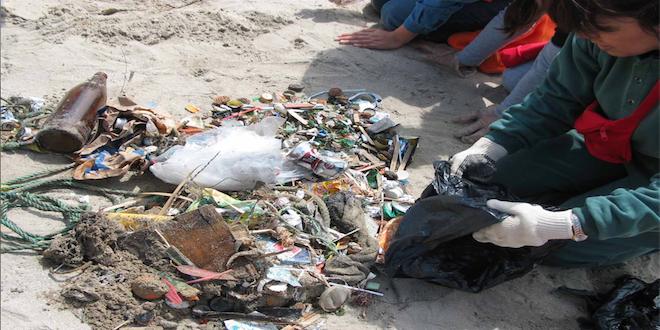 Investigadores de la UCN: Basura en playas se duplicó en Chile