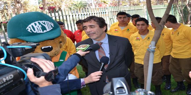 Conaf prioriza contar con un Servicio Nacional Forestal Público