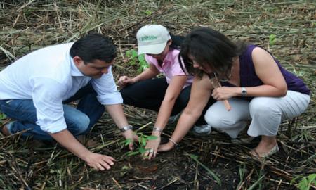 PNUMA: Economía carbono neutral es posible y un buen negocio