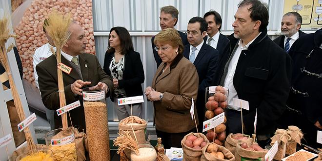 Potencian exportación de alimentos saludables innovadores