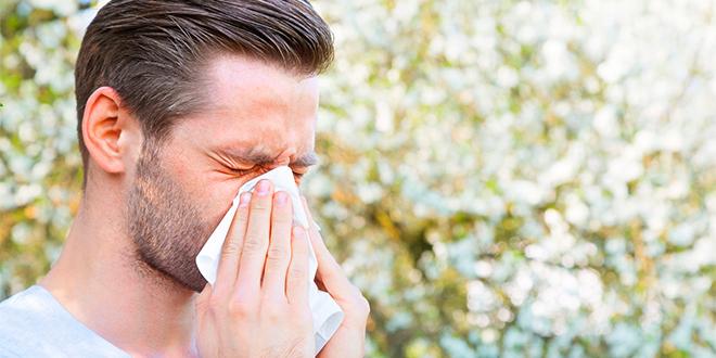 ¿Rinitis alérgica o resfrío común?