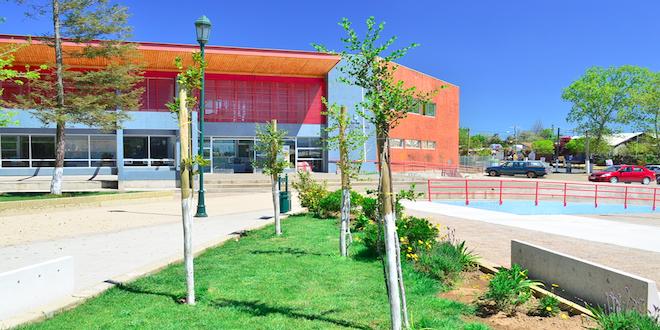 + Árboles para Chile entrega más de 5 millones de plantas en tres años