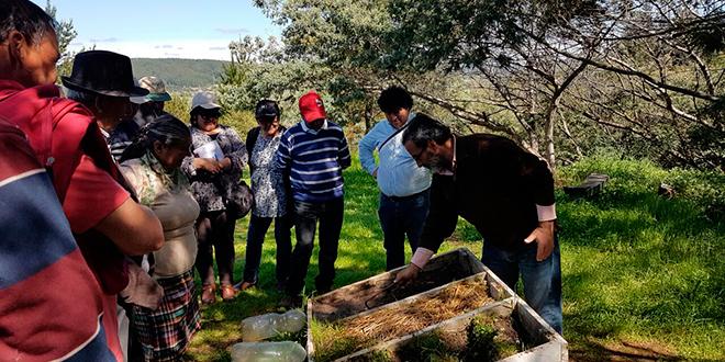 Vecinos del Biobío aprenden a captar agua y proteger suelos