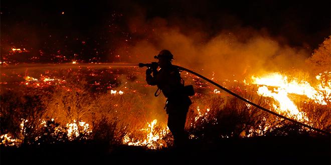 Casi 300 hectáreas afectadas por incendios forestales en Valparaíso