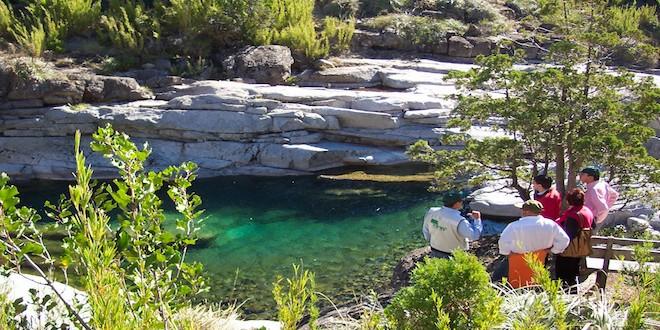 Conaf reabre 3 reservas nacionales y un monumento natural