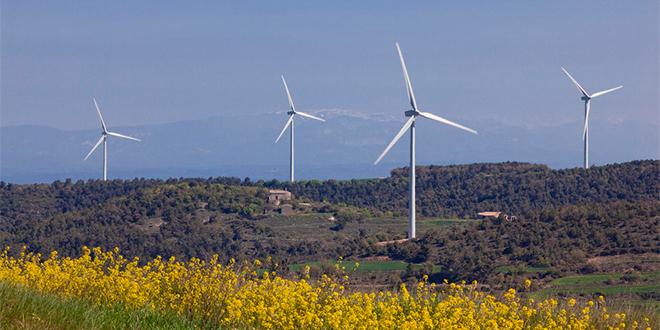 Crean aplicación gratuita que informa potencial eólico de cada zona del país