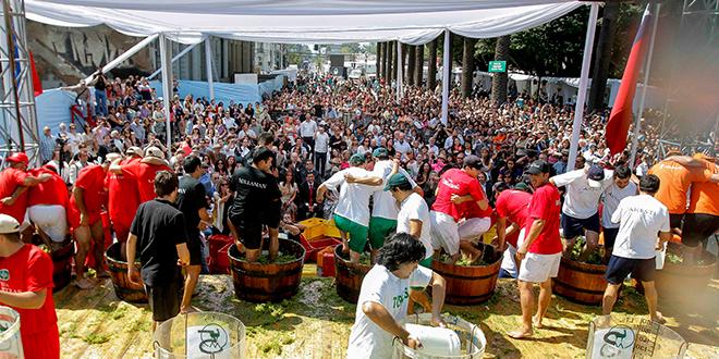 Curicó celebrará su 31° Fiesta de la Vendimia