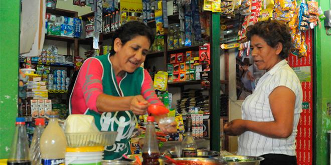 Programas de Microemprendimiento y su efecto en el trabajo independiente y asalariado
