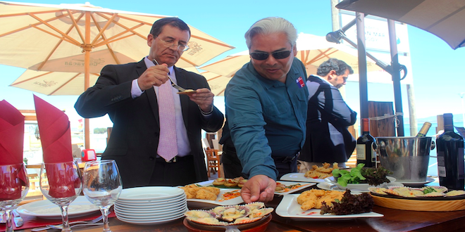 Vicuña y Punta de Choros lideran demanda turística en Coquimbo