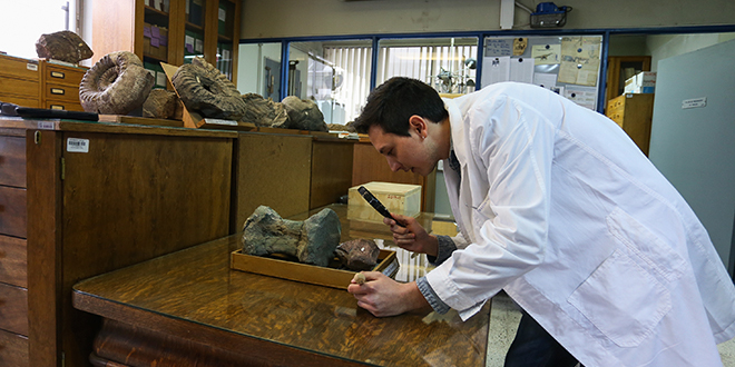 Chilesaurus diegosuarezi llega al Museo Nacional de Historia Natural