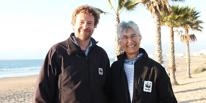 Destacan avances de Chile en conservación marina en cierre de IMPAC4