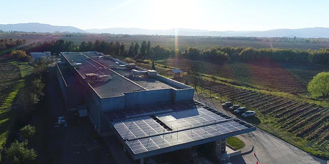 Miguel Torres apuesta por energías renovables