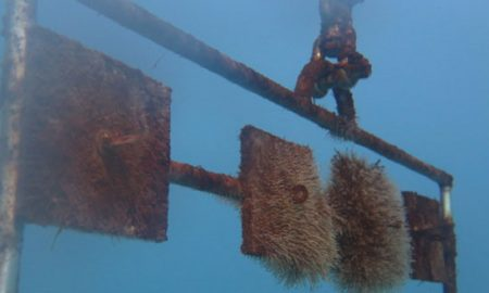 Realizan experimentos importantes para el avance de la energía marina en Chile