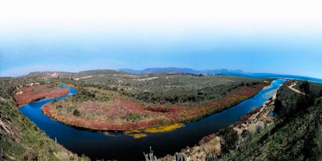 Nuevo Santuario de la Naturaleza Humedales de Tongoy
