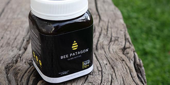 Miel Bee Patagon