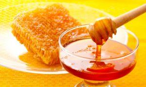 Bee Patagon busca convertirse en una de las mejores mieles del mundo