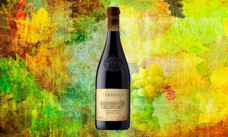 Vino orgánico Gran Reserva Tarapacá