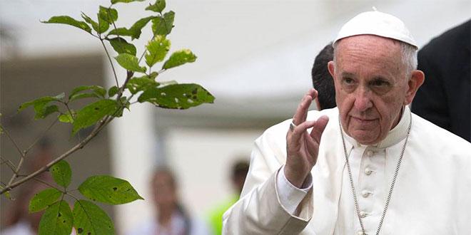 Papa Francisco y su decidida cruzada por el medio ambiente