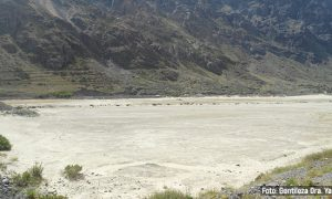 Científicos buscan revalorizar los desechos de relaves mineros