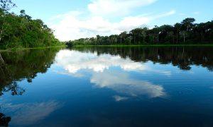 Amazonas y Galápagos: los más afectados por el cambio climático