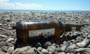 Mujeres resuelven problemas medioambientales en el sur de Chile