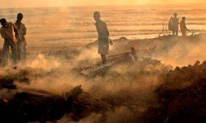 La fuerza de la naturaleza cuesta miles de millones a la agricultura