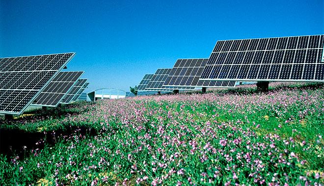 Enami cubrirá el 100% de su consumo eléctrico con energía renovable