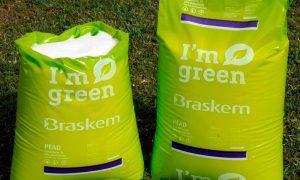 La nueva apuesta por el plástico verde
