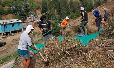 Daños por incendios forestales se redujeron un 94% en Valparaíso