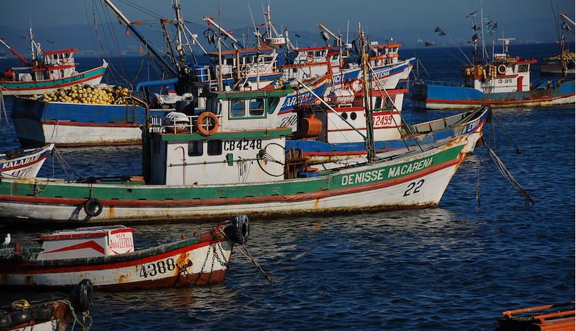 """Pescadores artesanales del Biobío piden a autoridad """"medidas concretas que protejan la sustentabilidad"""""""