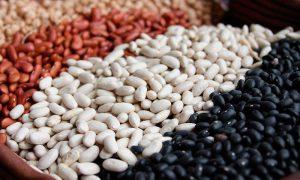 Porotos: un alimento ancestral y saludable