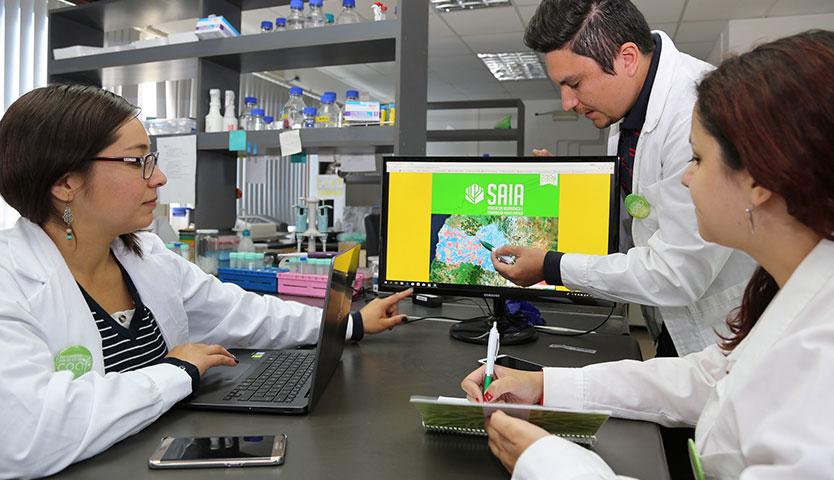Científicos de la Región de O'Higgins crean asistente virtual para la agricultura