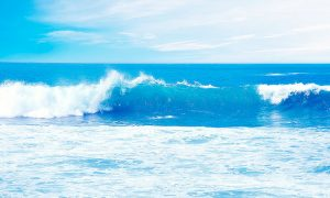 Impulsan debate en torno al desarrollo de energías marinas