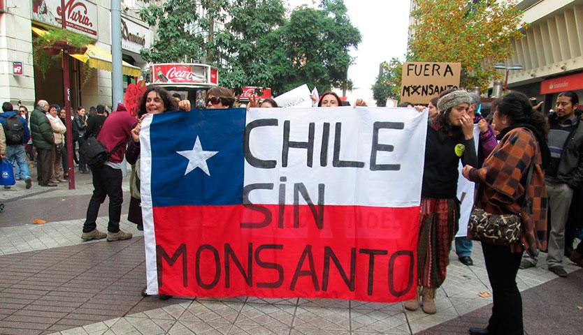 Organizaciones socio-ambientales convocan a marcha en Día Mundial Contra Monsanto-Bayer