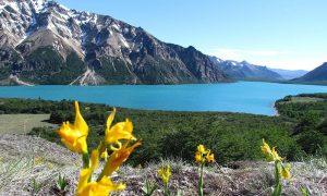 Premian a Chile por manejo de áreas silvestres protegidas del Estado