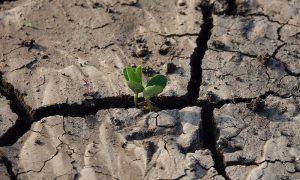 ¿Por qué es importante administrar el recurso hídrico?