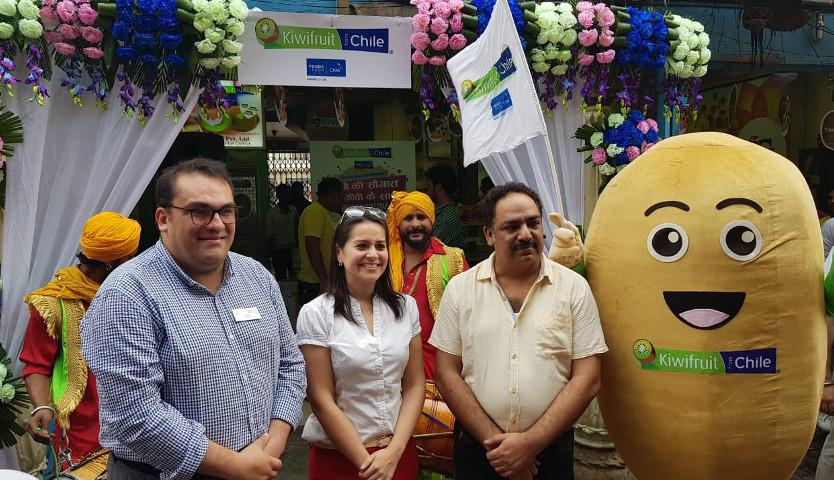 Con comercio electrónico potenciarán ventas de kiwis chilenos a India