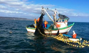 5 medidas para combatir la pesca ilegal en aguas nacionales
