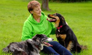 Todo lo que debes saber sobre la tenencia responsable de mascotas