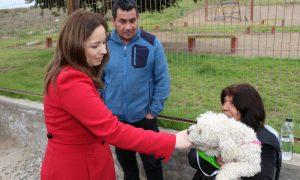 Registrarán con microchip y esterilizarán 7 mil mascotas en La Serena
