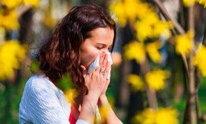 80% de los cuadros de asma tendrían un origen alérgico