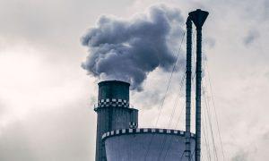 Presentan proyecto que sanciona duramente el delito ambiental