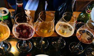 Estudian levaduras para desarrollar la primera cerveza auténticamente chilena
