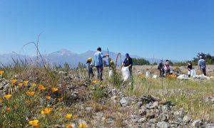 Más de 200 voluntarios ayudan a limpieza en río Clarillo de Pirque