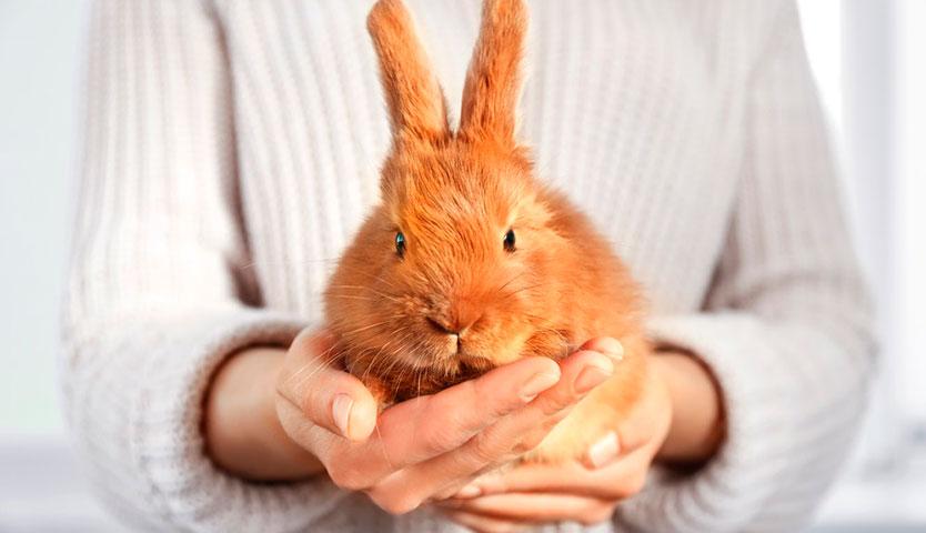 Natura recibe certificación de Cruelty Free International contra las pruebas en animales