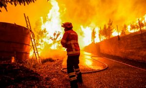 2040: Un mundo con escasez de comida, incendios forestales e inundaciones